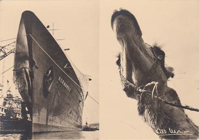 Paquebot Normandie - Carte postale Grand format - Editeur L.P.A.M Editions - `Albert Monier - Vaisseaux`